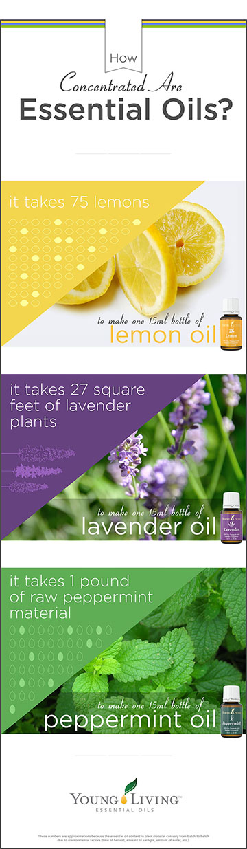 Essential oils concentration 1