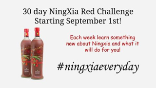 Ningxia red challenge every day